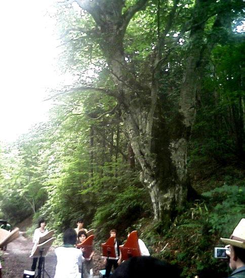 聖山音楽祭2